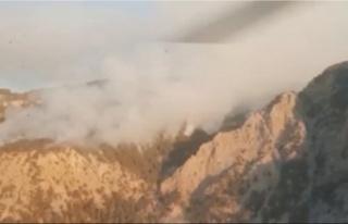 Antalya'daki 2 yangına havadan ve karadan müdahale...