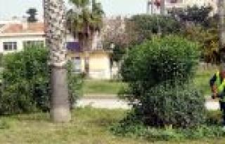 Akdeniz Belediyesi Bahar Temizliğine Başladı