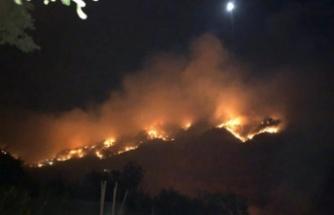 Gazipaşa'da 3 ayrı orman yangını