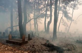 Yangın mezarlıkları bile küle çevirdi!