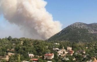 Alanya'yı yakan Güzelbağ yangını kontrol altında