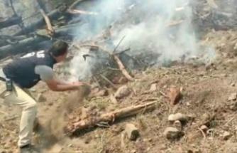 Polis avuç avuç kumla ormanda yükselen alevleri söndürmeye çalıştı