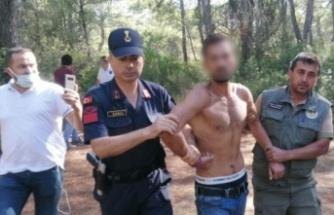 Ormanı yakarken suçüstü yakalanan zanlı suç makinası çıktı