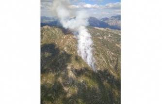 Orman yangınına 15 helikopter 3 uçak desteği