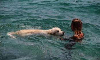 Rus turist, 9 bin kilometrelik yoldan getirdiği köpeğiyle Antalya'da deniz keyfi yaptı