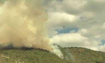 6 hektar ormanlık alan yandı