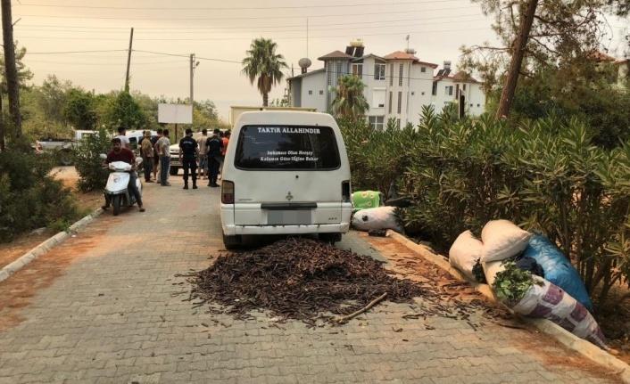 Alanya'da orman nöbetindeki vatandaşlar, keçiboynuzu hırsızlarını yakaladı